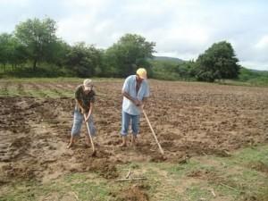 agricultorumbuzeirense-300x225 Municípios do Cariri Paraibano irão receber o pagamento do Garantia Safra