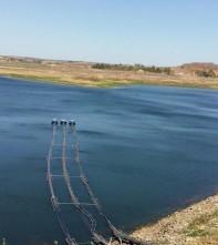 bo Cagepa inicia fase de testes em sistema de captação flutuante no Açude Boqueirão