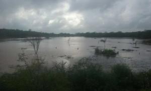 Sitio-Riacho-do-Meio-300x180 No Cariri Cidades registram chuva de 80 milímetros