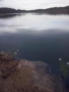 camalau1-225x300 Açude de Camalaú recebe água de chuvas e aumenta reservatório; veja fotos