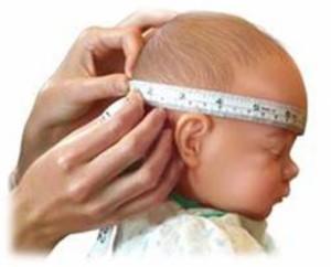 microcefalia-300x242 Saúde divulga boletim do monitoramento dos casos de microcefalia na Paraíba; Monteiro lidera ranking no Cariri