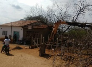 timthumb-1-300x218 Raio derruba árvore em São Sebastião do Umbuzeiro e assusta moradores