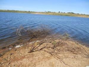Açude-300x225-300x225 Abastecimento precário: População continua enfrentando problemas em Monteiro mesmo com água suficiente