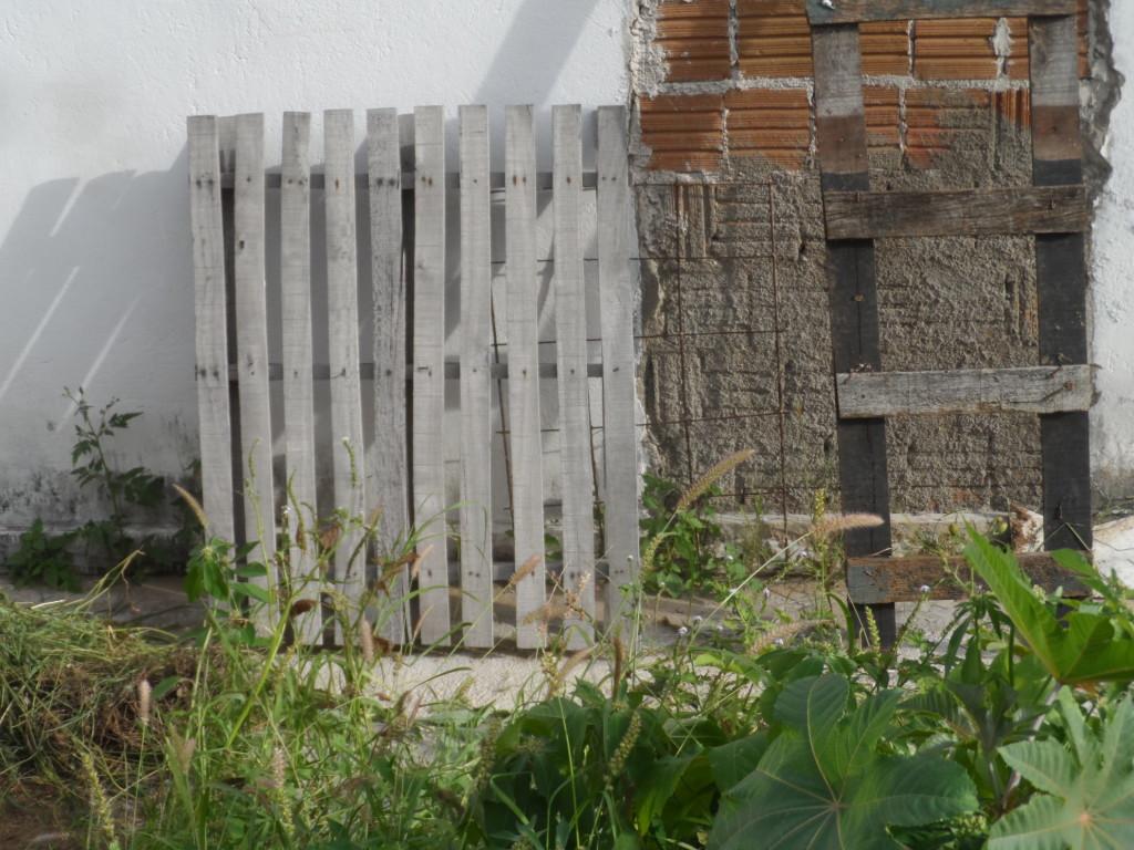 SAM_6208-1024x768 DENÚNCIA: Matagal toma conta da Secretaria de Saúde de Monteiro