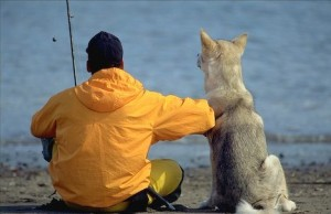 cachorro-melhor-amigo-homem-300x194 Juiz determina guarda alternada de cachorro