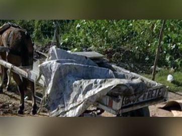 16776236280003622710000 Casal é preso suspeito de levar corpo em carroça por ruas de João Pessoa