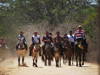 DSCF0123 Cavalgada da União atrai centenas de cavaleiros no Cariri