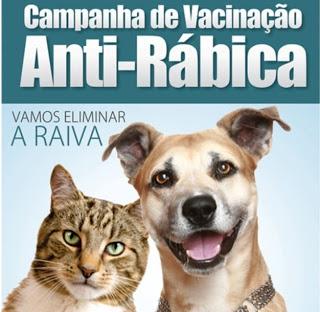 1-2-300x293 Monteiro realiza campanha de vacinação animal