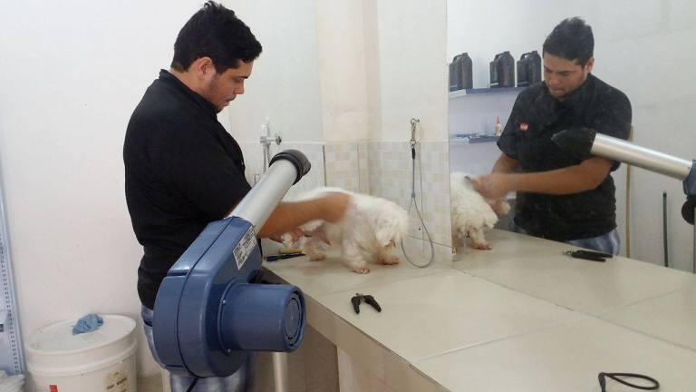 13313396_10206940549455360_877737527_o Em Monteiro Pet Shop e consultório Amigo Bicho