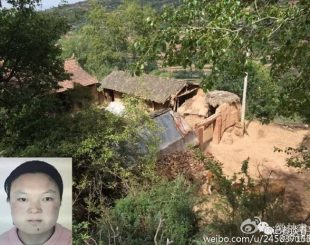 yang-gailan-310x245-300x237 Chinesa mata os quatro filhos a machadadas após perder ajuda social