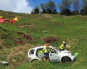 carro-2-310x245-300x237 Cão busca ajuda e salva dono que capotou carro na Nova Zelândia