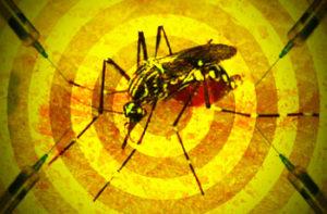 febre_amarela_grande-300x197 Surto de febre amarela deve se espalhar pelo Brasil, diz OMS