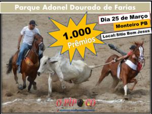 vaquejada-300x225 Dia 25 março Grande final do Circuito de Vaquejada no sitio Bom Jesus em Monteiro
