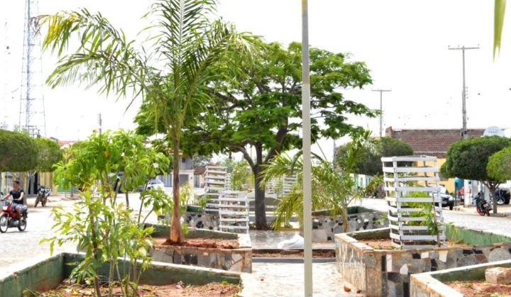 zabele-pb-1-300x175 Praças Públicas recebem projeto de arborização e transforma ruas de Zabelê