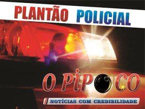 plantao-policial-2-300x225 Polícia apreende armas e prende acusados em envolvimento com desmanche de motos em Monteiro