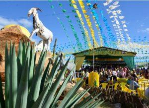 timthumb-300x218 Festa do Bode Rei de Cabaceiras começa nesta sexta-feira