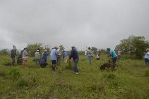 17626057380-300x199 Agricultores ajudam no reflorestamento de reserva legal em assentamento na Paraíba