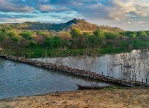timthumb-2-300x218 NO CARIRI: População improvisa ponte de madeira na Transposição