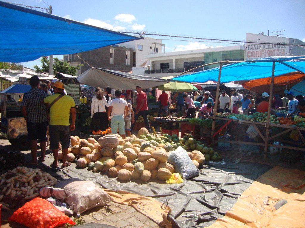 feirra-livre-monteiro-34-1024x768 A feira livre da cidade de Monteiro