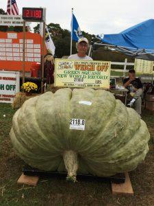 abobora-1-225x300 Jerimum de quase 1 tonelada é mais pesada do mundo