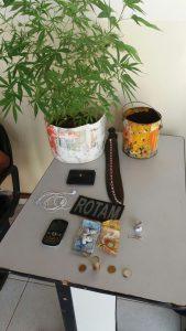 pé-de-maconha-é-encontrado-dentro-de-residencia-em-monteiro-169x300 Exclusivo: Dois jovens são presos com drogas e pé de maconha em casa, emMonteiro.