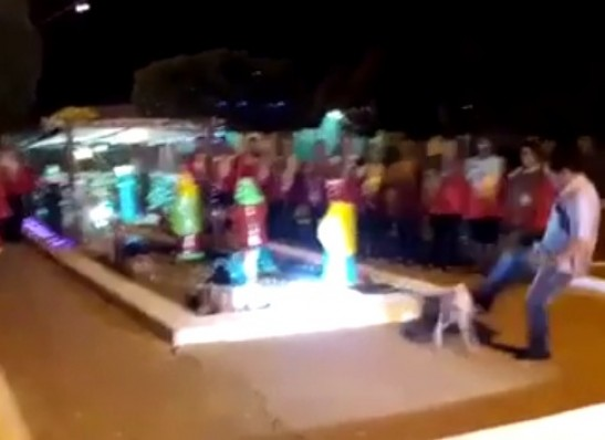 timthumb.php_-2 BICUDO NA CACHORRA: Secretário de Caraúbas chuta cadela e revolta população
