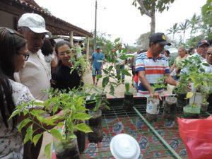 Acgricultura-696x522-300x225 Projeto 'Da Roça à Mesa' oferece tecnologia à produção de agricultores