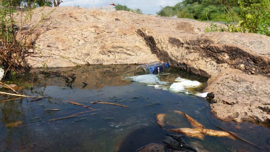 4c79898a-0332-4701-9367-71142d1104f7-1024x576 Banhistas põem em risco a preservação do Rio São Francisco em Monteiro.