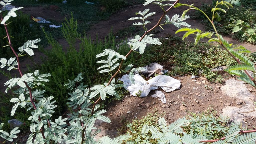 9ba50146-1dac-4592-b127-eb362adf9f76-1024x576 Banhistas põem em risco a preservação do Rio São Francisco em Monteiro.