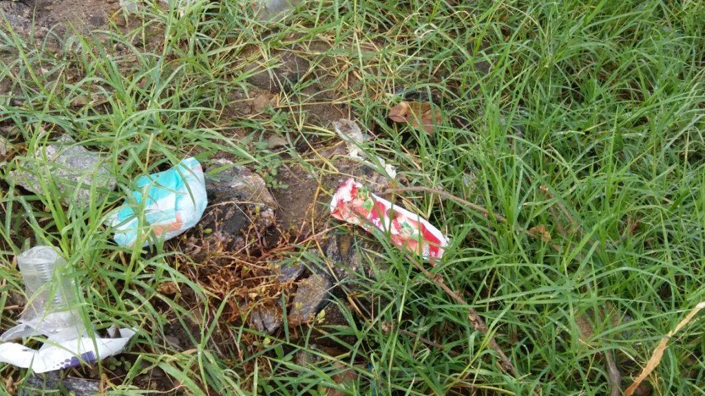 cdb09c9a-d8ca-4e62-a63c-19b4ed1e24f0-1024x576 Banhistas põem em risco a preservação do Rio São Francisco em Monteiro.