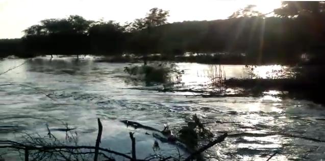 rio Vídeo mostra cheia do rio Paraíba onde há oito anos não passava água