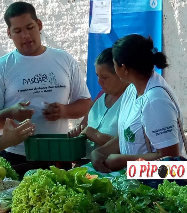 em Feira comemorativa ao dia internacional do meio ambiente é realizada em Monteiro