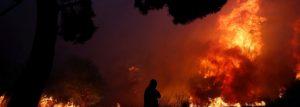 floresta-300x107 Incêndios na Grécia causam morte e forçam fuga de moradores