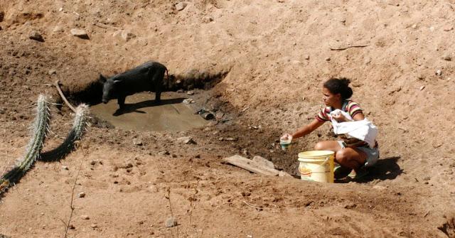 03052017-DSC_9124 54 Cidades de PE estão em estado De emergência devido a seca entre elas Sertânia