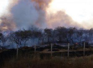 timthumb-15-300x218 Novo incêndio e de grandes proporções é registrado entre Serra Branca e Coxixola