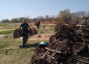 timthumb-4-300x218 Operação do Ibama apreende aves e multa caçadores em mais de R$ 96 mil