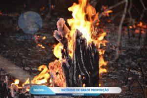 DSC_2121-300x199 Incêndio na Zona rural de Sertania toma grande proporções