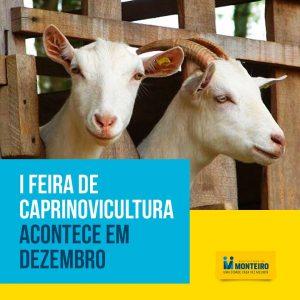 Monteiro-se-prepara-para-receber-a-I-Feira-de-Caprinovinocultura-em-dezembro-300x300 Monteiro se prepara para receber a I Feira de Caprinovinocultura de 05 a 09 de dezembro