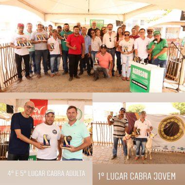 WhatsApp-Image-2018-12-09-at-20.29.19-380x380 CPNET é destaque no 1º Torneio Leiteiro Intermunicipal em Monteiro.