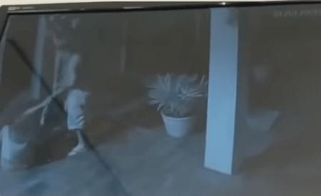 vvv Advogado é preso suspeito de agredir mulher NA capital