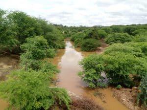 001-32-300x225 Chove forte em São Sebastião do Umbuzeiro e plantações ficam alagadas