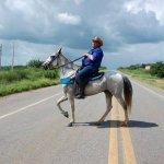 fotos-da-13ª-cavalgada-da-integracao-do-cariri-em-monteiro-4-150x150 FOTOS: 13ª Cavalgada da Integração do Cariri reúne centenas de cavaleiros em Monteiro.
