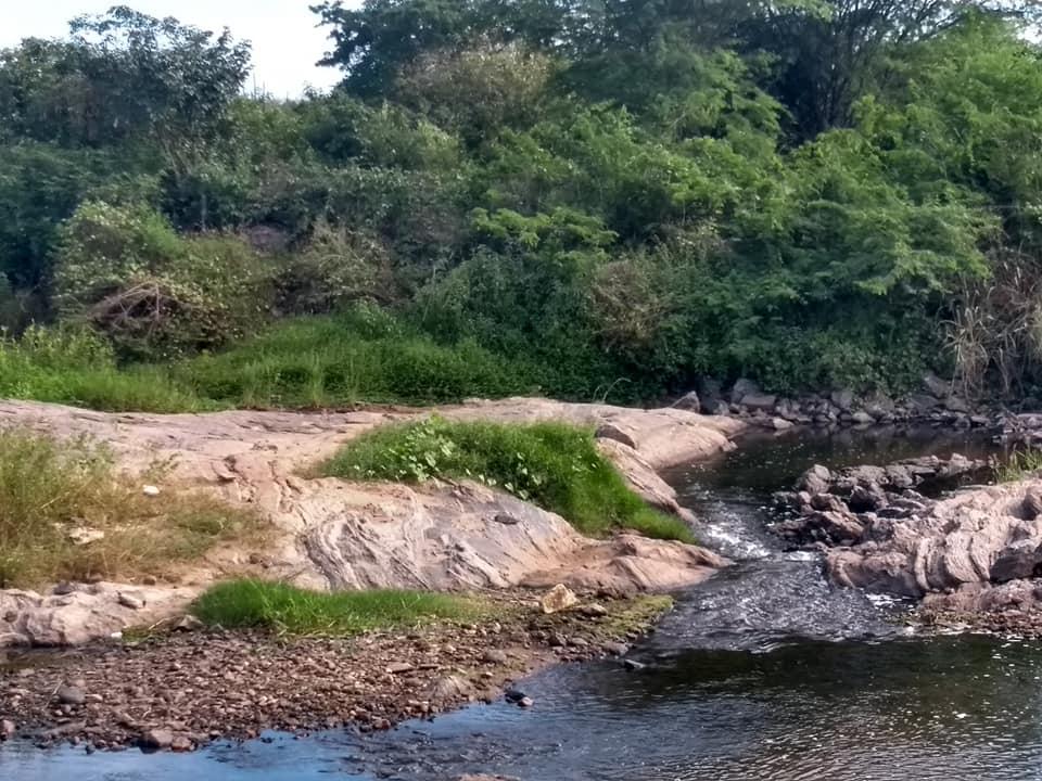 transposição_rio_sao_francisco3-520x390 Transposição do Rio São Francisco totalmente abandonada em Monteiro