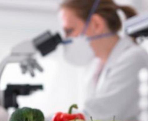 analise01-474x390 Analise confirma que objeto encontrado por monteirense dentro de extrato de tomate não é rato
