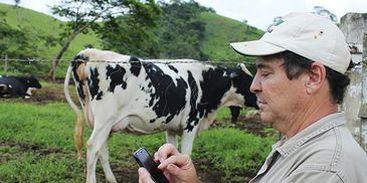 Aplicativo auxilia na gestão e otimização do rebanho de leite