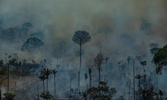 xdesmatamento.jpg.pagespeed.ic_.9XgrmJ1R5V-650x390 Ministério da Economia libera R$ 38,5 milhões para Defesa combater fogo na Amazônia