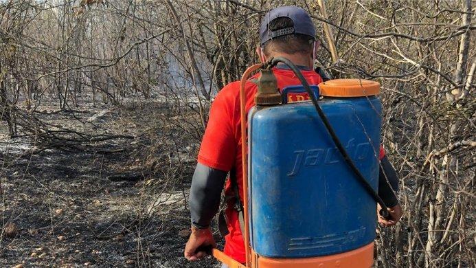 70537698_2361642683942694_1593369541818187776_n-693x390 Bombeiros Civis de Monteiro combatem incêndio na zona rural de Monteiro