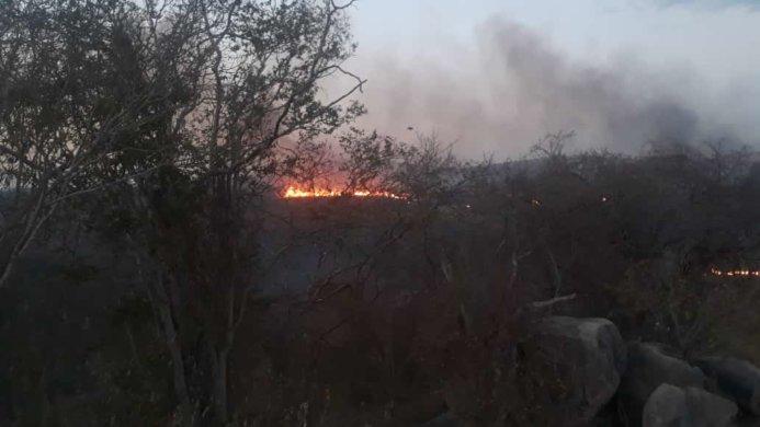 IMG-20191024-WA0267-693x390 Incêndio de grandes proporções atinge a zona rural de Monteiro, mas é controlado