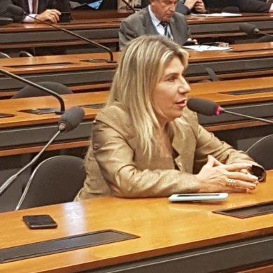 edna-henrique-deputada-federal-390x390 Edna Henrique é condenada pela Justiça Federal por irregularidades em convênio com o Ministério do Turismo