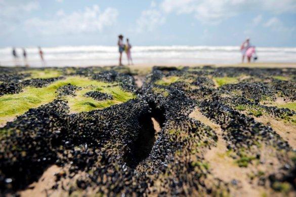 mancha-petroleo-585x390 Governo libera R$ 130 milhões para seguro-defeso a pescadores do NE